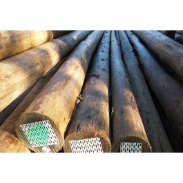 Natural Hardwood Poles �C Total Poles265 x 265 jpeg 13kB